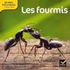 LES DOCS RIBAMBELLE CYCLE 2 ED. 2014 - LES FOURMIS